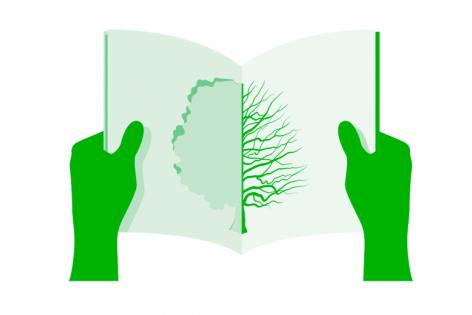 Print og miljø